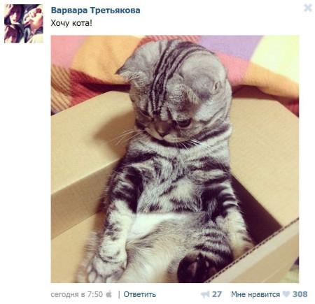 Варвара-Третьякова-решила-завести-котика-2