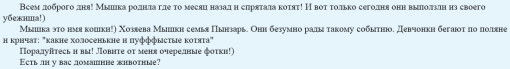 Никита-Кузнецов-На-проекте-пополнение-1