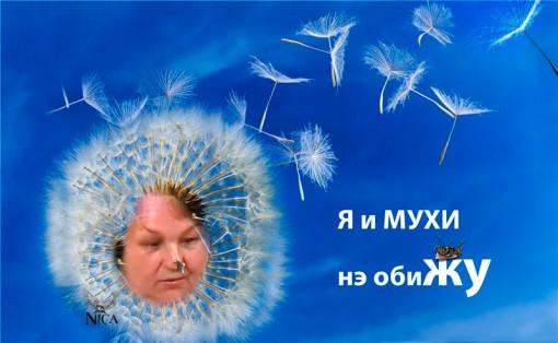 Приколы-Дом-2-24