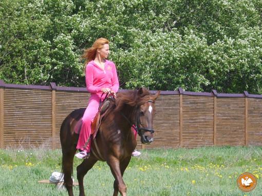 Романтика в нашей жизни и прогулки на лошадях.