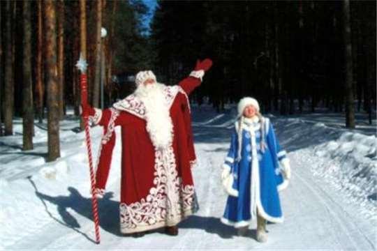 Алексей Самсонов в новогоднюю ночь будет работать «дедушкой по вызову»